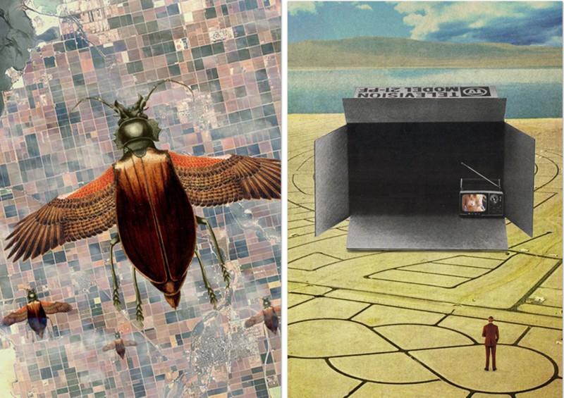 """Left: """"Flying High"""" by Sammy Slabbinck -- Right: """"Pay-per-view"""" by Sammy Slabbinck"""