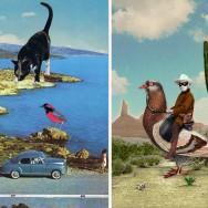 "Left: ""Ignorance is bliss"" by Sammy Slabbinck -- Right: ""The Pigeon Ranger"" by Sammy Slabbinck"