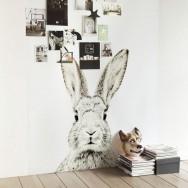 rabbit wall